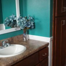 A bathroom renovation for $27