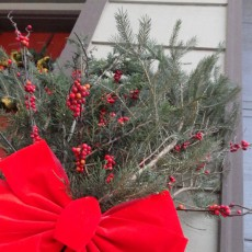 Christmas holiday decor evergreen cranberry