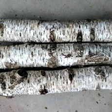 How to use REAL birch tree branches and bark in your Christmas decor