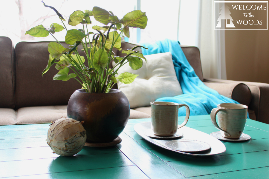 Displaying pottery in your living room on your coffee table mugs and planter bowl.
