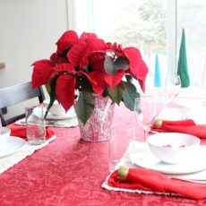 Join in for a holiday home tour of poinsettia themed decorations in red, blue, and green. You'll find lots of diy creative decor ideas to inspire you this Christmas!