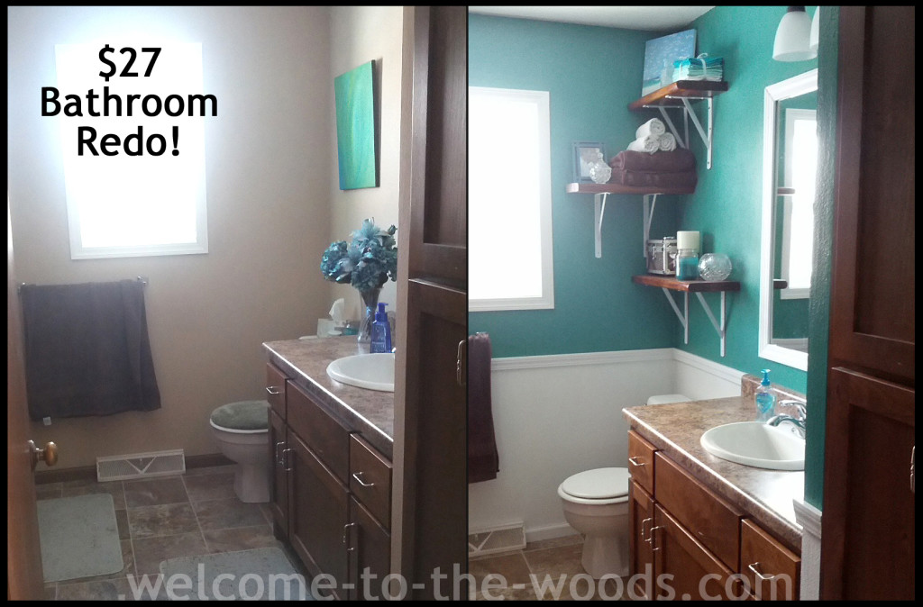 Before And After Bathroom Redo Project For Only $27!