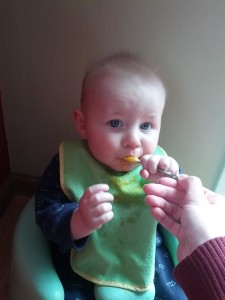 baby eating puree solid food