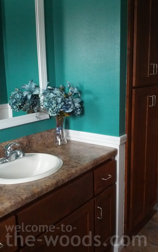 A Bathroom Renovation For $27