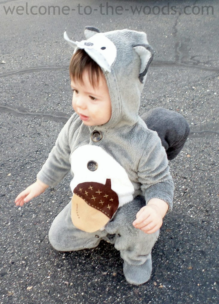 Diy punny halloween costumes welcome to the woods diy squirrel baby costume solutioingenieria Choice Image