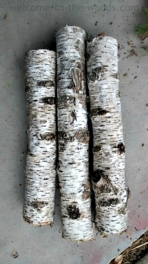 Birch Tree Christmas Diy Decor Welcome To The Woods