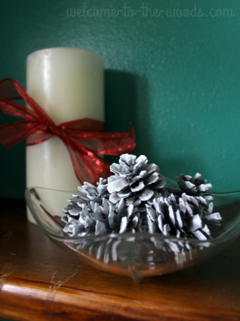 A simple bowl of pine cones painted white can make a beautiful tabletop decoration for Christmas or winter.