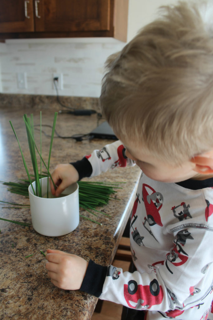 An easy summer craft you can do with your kids!