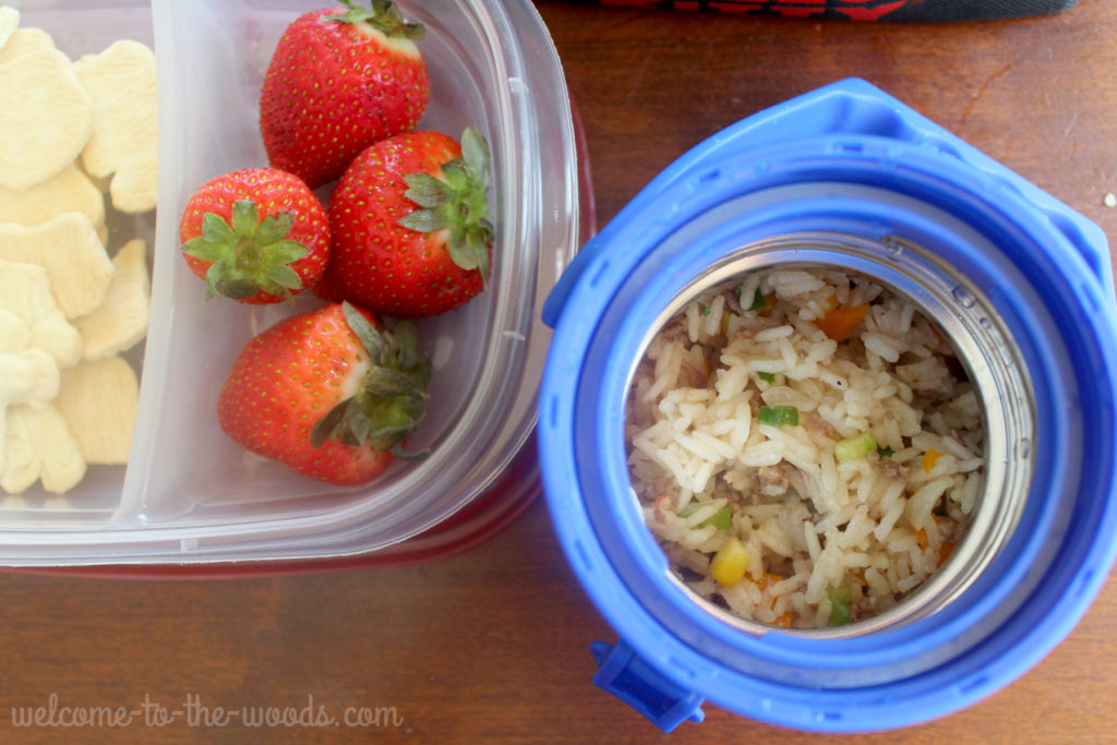 Packing school lunch tips tricks welcome to the woods packing school lunch for your kid doesnt have to be cold invest in forumfinder Images