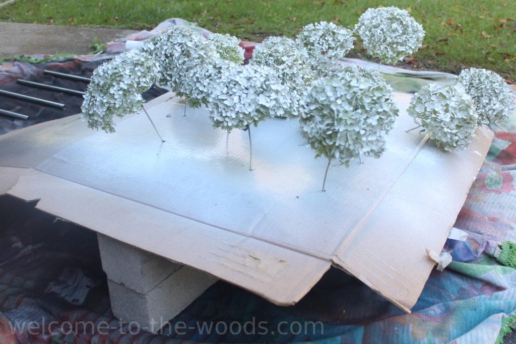 Spray painted annabelle hydrangeas flower white glitter for Christmas