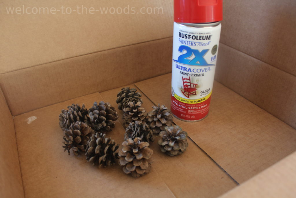 You can paint pinecones with spray paint as well. Spraying inside a cardboard box prevents overspray.