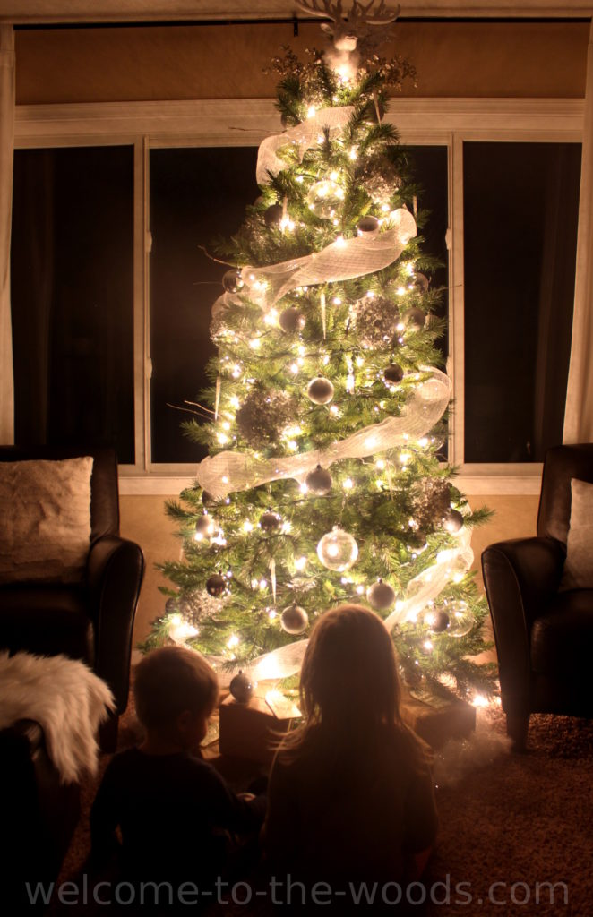 Beautiful Christmas tree all lit up at night with little children sitting in front of it is totally magical.