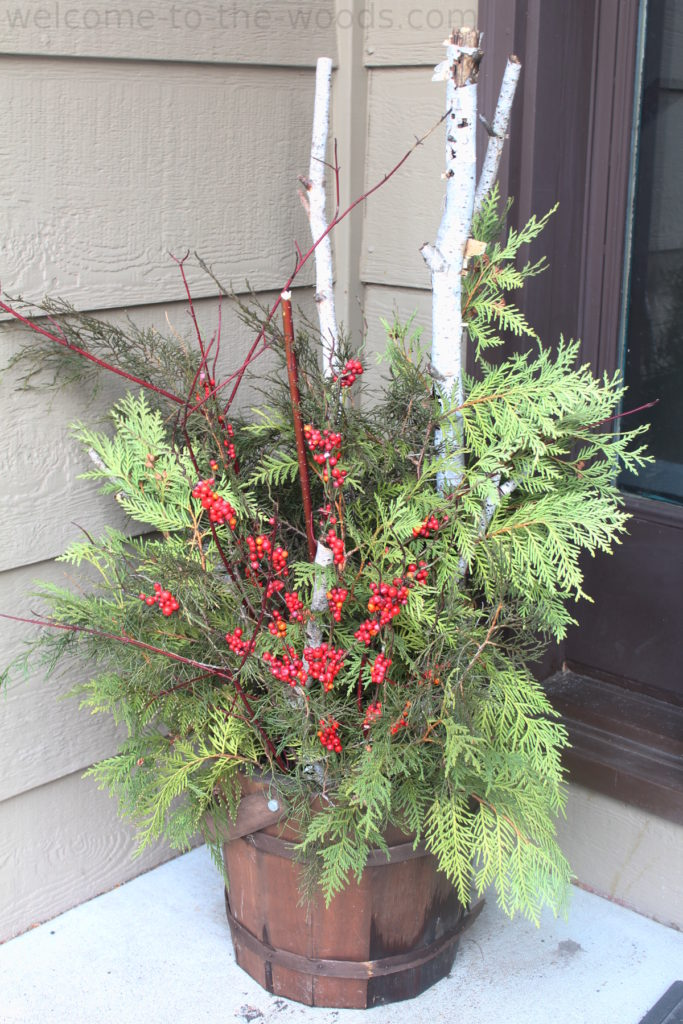 Beautiful Christmas holiday outdoor planter topiary made from red twig dogwood branches, cedar and cypress evergreen bows, birch branches, and winter berry decor